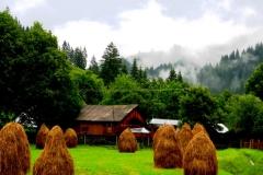 tur Bucovina